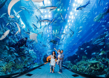 DUBAI-AQUARIUM-AND-UNDER-WATER-ZOO