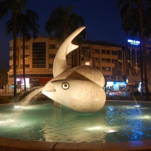 Fish Roundabout